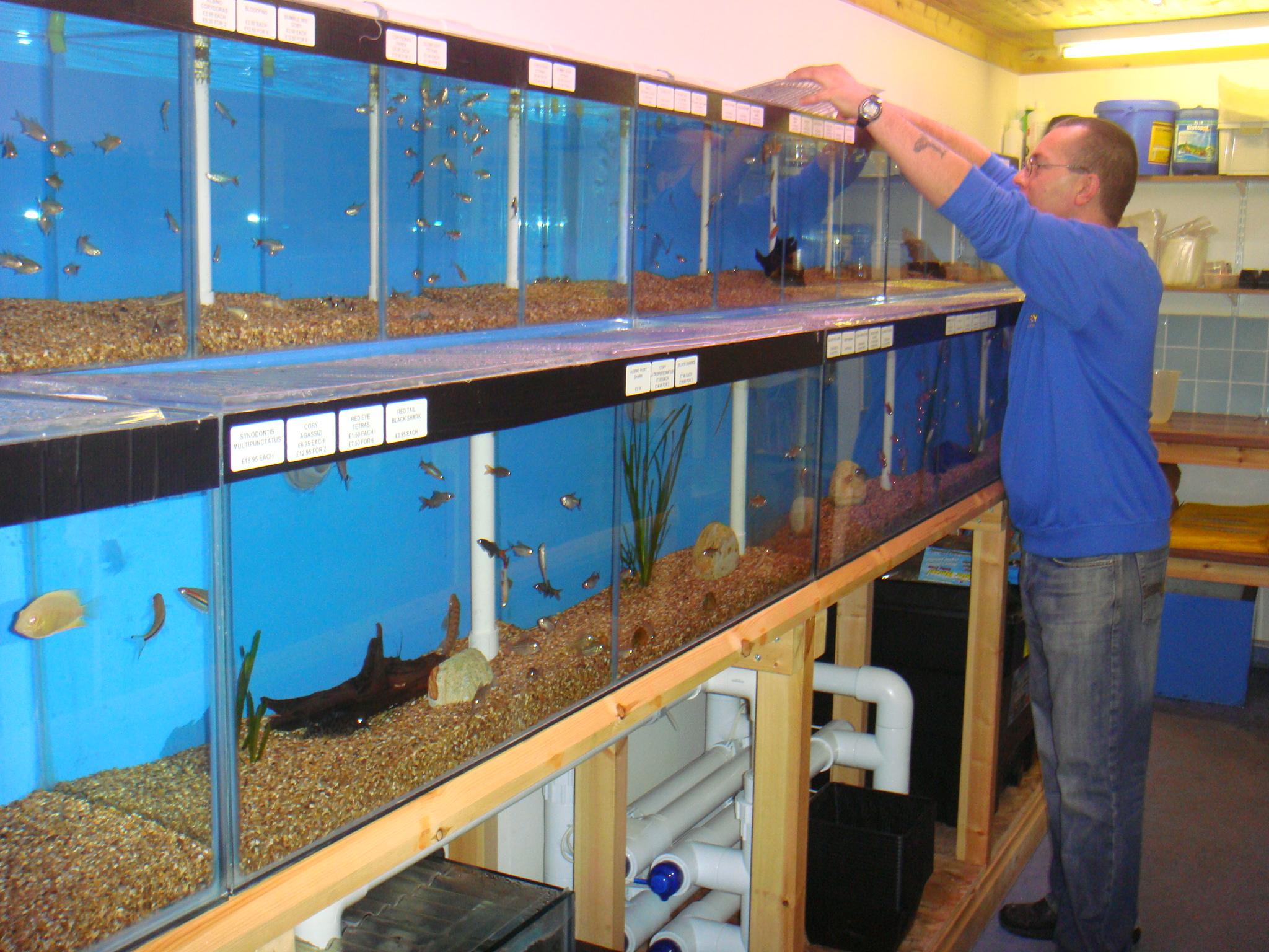 Perrys Aquatic Pet shop in Lincoln - Perrys Aquatic Centre