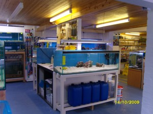 FREE Aquarium Water Tests in Lincolnshire