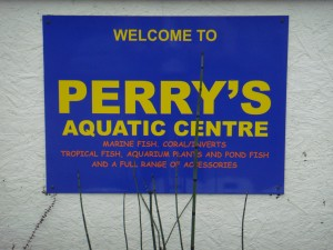 Welcome to Perry's Aquatic Centre