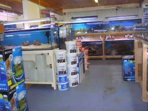 Lincolnshires best aquatic shop