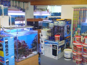 fish and pet accessories at Perrys Aquatic Centre