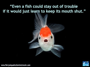 Fish Can Get Into Trouble In Their Own Way